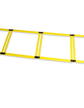 trx ladder